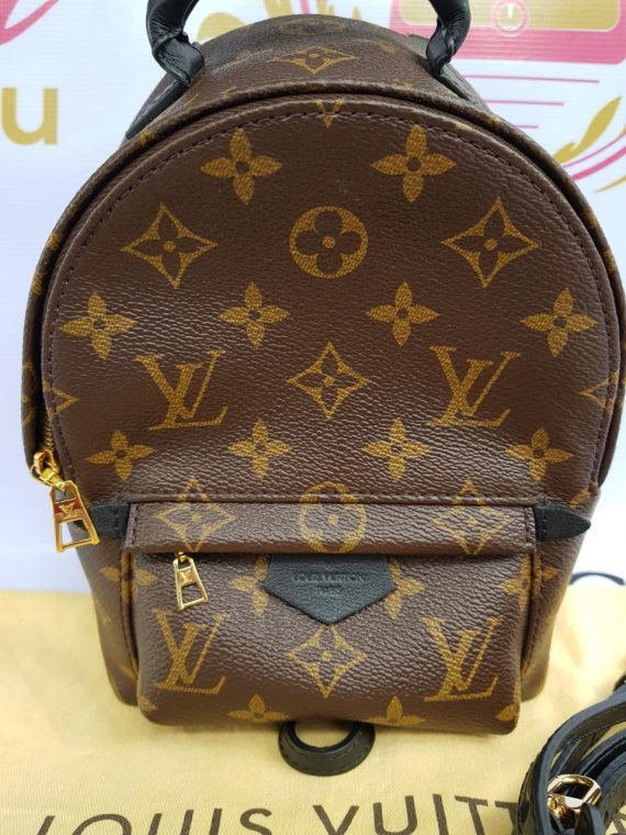 Authentic Louis Vuitton Palmspring Mini backpack pre-loved